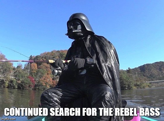 CONTINUED SEARCH FOR THE REBEL BASS | made w/ Imgflip meme maker