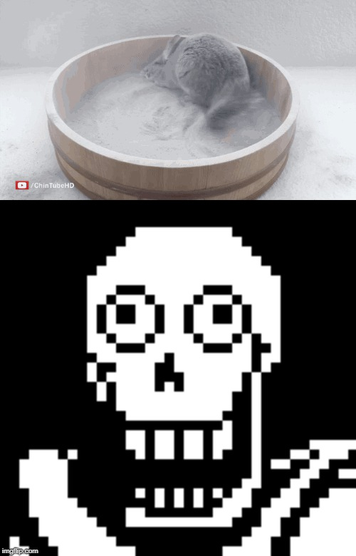 Bathe in the Dust of your Enemies | image tagged in undertale,papyrus,chinchilla,morbid,death | made w/ Imgflip meme maker