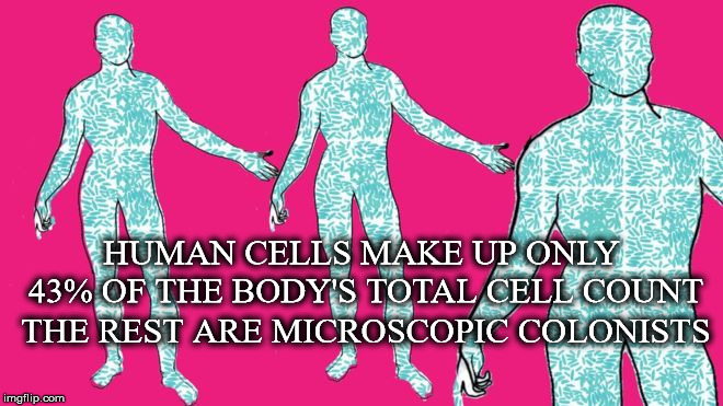 Microscopic Colonists | HUMAN CELLS MAKE UP ONLY 43% OF THE BODY'S TOTAL CELL COUNT THE REST ARE MICROSCOPIC COLONISTS | image tagged in human,cells,count,bacteria,viruses,fungi | made w/ Imgflip meme maker