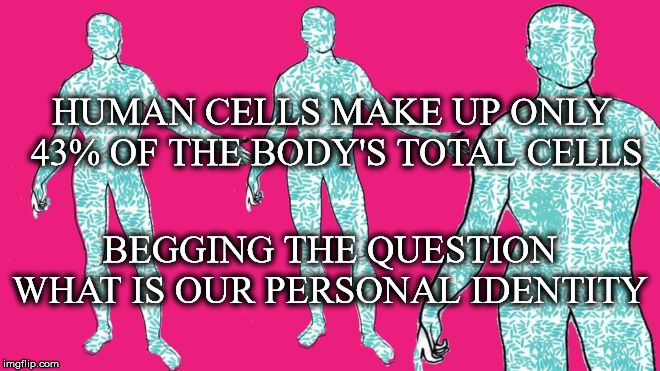 Who Are You? |  HUMAN CELLS MAKE UP ONLY 43% OF THE BODY'S TOTAL CELLS; BEGGING THE QUESTION WHAT IS OUR PERSONAL IDENTITY | image tagged in human,cells,make up,begging the question,personal,identity | made w/ Imgflip meme maker