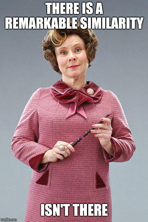 Dolores Umbridge | THERE IS A REMARKABLE SIMILARITY ISN'T THERE | image tagged in dolores umbridge | made w/ Imgflip meme maker