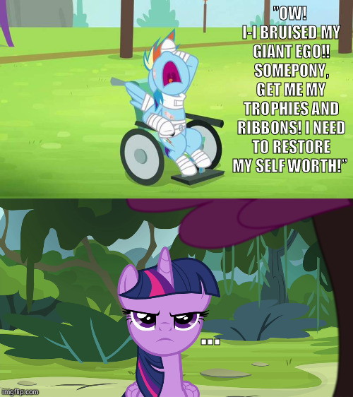 Pegasus Pigeon Poop!  | ''OW! I-I BRUISED MY GIANT EGO!! SOMEPONY, GET ME MY TROPHIES AND RIBBONS! I NEED TO RESTORE MY SELF WORTH!'' ... | image tagged in my little pony,funny,rainbow dash,twilight sparkle,wheelchair,ego | made w/ Imgflip meme maker