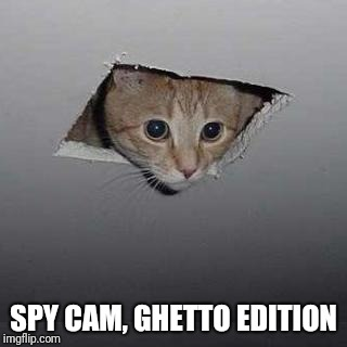 Only for 8,99$ | SPY CAM, GHETTO EDITION | image tagged in memes,ceiling cat | made w/ Imgflip meme maker