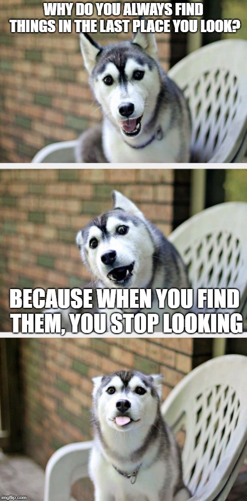 Jokey Dog strikes again! | WHY DO YOU ALWAYS FIND THINGS IN THE LAST PLACE YOU LOOK? BECAUSE WHEN YOU FIND THEM, YOU STOP LOOKING | image tagged in bad pun dog 2,memes,jokes,funny,latest | made w/ Imgflip meme maker
