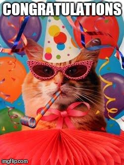 Cat Celebration! | CONGRATULATIONS | image tagged in cat celebration | made w/ Imgflip meme maker