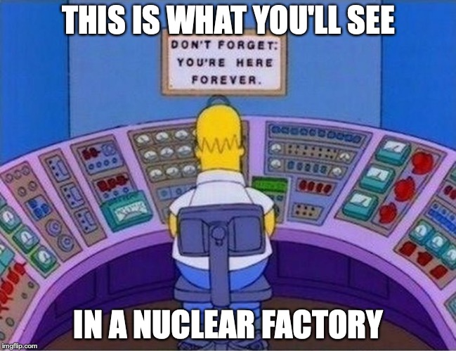 Sign in Homer's Job | THIS IS WHAT YOU'LL SEE IN A NUCLEAR FACTORY | image tagged in the simpsons,sign,job,homer simpson,memes | made w/ Imgflip meme maker