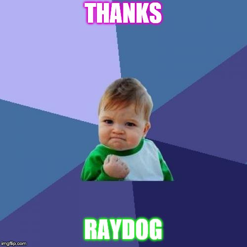 Success Kid Meme | THANKS RAYDOG | image tagged in memes,success kid | made w/ Imgflip meme maker