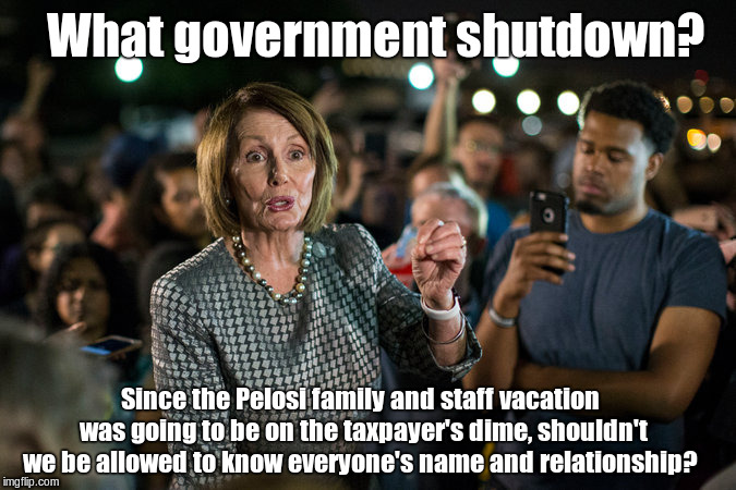 pelosi | What government shutdown? Since the Pelosi family and staff vacation was going to be on the taxpayer's dime, shouldn't we be allowed to know | image tagged in pelosi | made w/ Imgflip meme maker