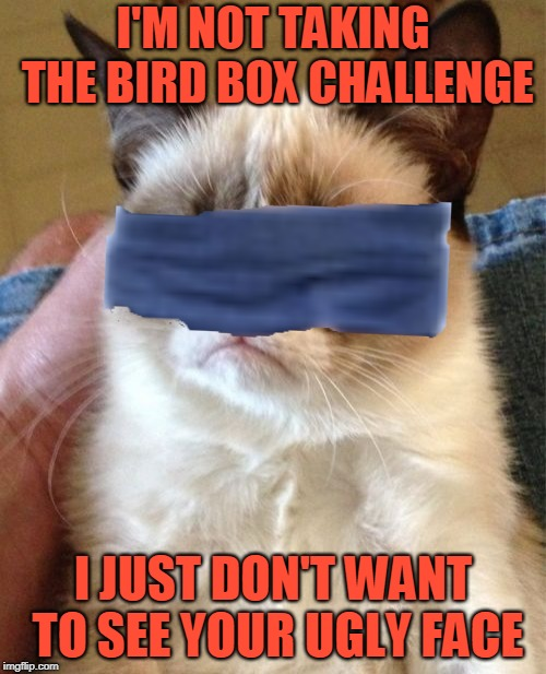 Love is Blind. Hate is Blinded.  (ง︡'-'︠)ง ¯_(ツ)_/¯ | I'M NOT TAKING THE BIRD BOX CHALLENGE I JUST DON'T WANT TO SEE YOUR UGLY FACE | image tagged in memes,grumpy cat,movie,bird box,challenge,grumpy cat insults | made w/ Imgflip meme maker