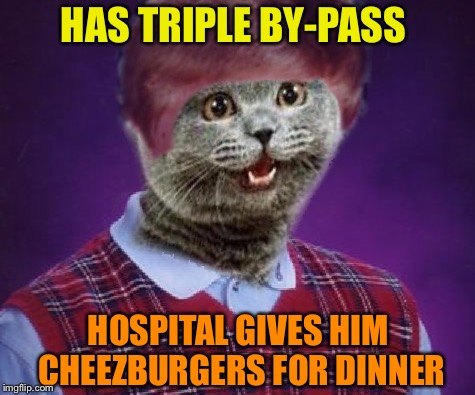 Thanks to nixieknox for bad luck cheezburger cat. | HAS TRIPLE BY-PASS HOSPITAL GIVES HIM CHEEZBURGERS FOR DINNER | image tagged in i can has cheezburger cat,bad luck brian,cats,memes,funny | made w/ Imgflip meme maker