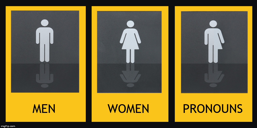MEN              WOMEN         PRONOUNS | image tagged in toilet sign | made w/ Imgflip meme maker