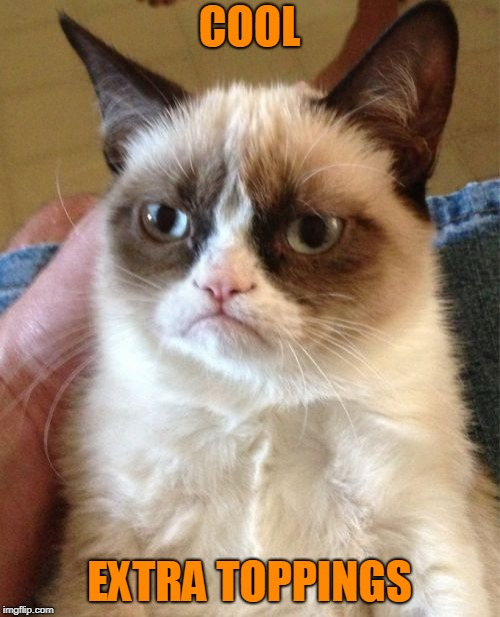 Grumpy Cat Meme | COOL EXTRA TOPPINGS | image tagged in memes,grumpy cat | made w/ Imgflip meme maker