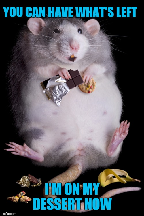 Mouse | YOU CAN HAVE WHAT'S LEFT I'M ON MY DESSERT NOW | image tagged in mouse | made w/ Imgflip meme maker