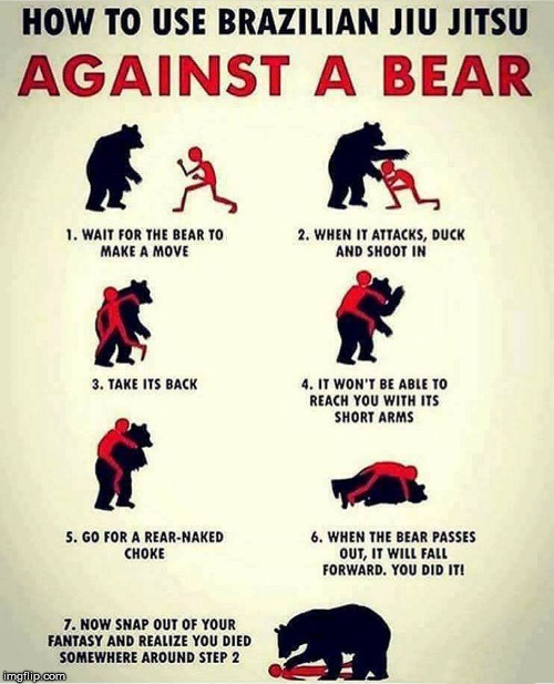 Maybe try Karate on the bear? | image tagged in memes,martial arts,jiu jitsu,bear,fighting,funny | made w/ Imgflip meme maker
