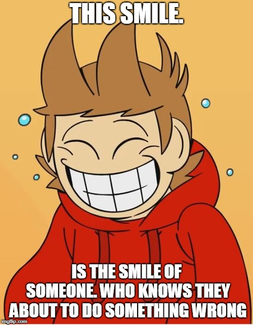 Tord. Pull yourself together please | THIS SMILE. IS THE SMILE OF SOMEONE. WHO KNOWS THEY ABOUT TO DO SOMETHING WRONG | image tagged in eddsworld,tord,funny,memes | made w/ Imgflip meme maker