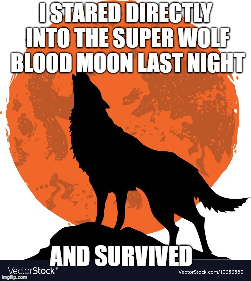 super blood wolf moon | I STARED DIRECTLY INTO THE SUPER WOLF BLOOD MOON LAST NIGHT AND SURVIVED | image tagged in funny,insanity wolf,werewolf,wolf | made w/ Imgflip meme maker