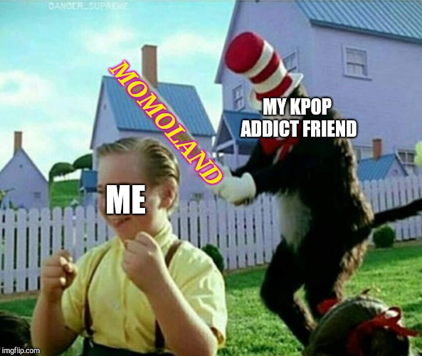 MY KPOP ADDICT FRIEND MOMOLAND ME | image tagged in cat in the hat,memes,kpop | made w/ Imgflip meme maker