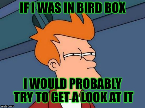 Futurama Fry | IF I WAS IN BIRD BOX I WOULD PROBABLY TRY TO GET A LOOK AT IT | image tagged in memes,futurama fry,bird box | made w/ Imgflip meme maker