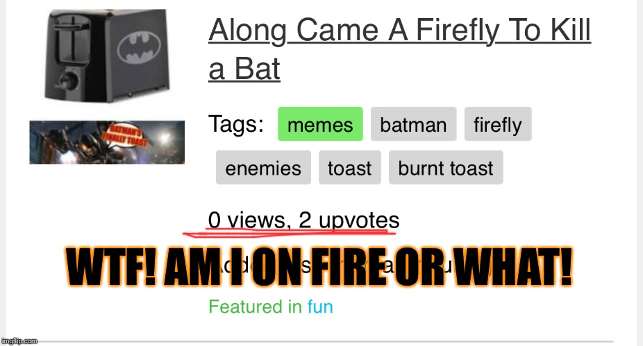 And That..is what you call a flying start to a meme | WTF! AM I ON FIRE OR WHAT! | image tagged in memes,funny,wtf,upvotes,no,views | made w/ Imgflip meme maker