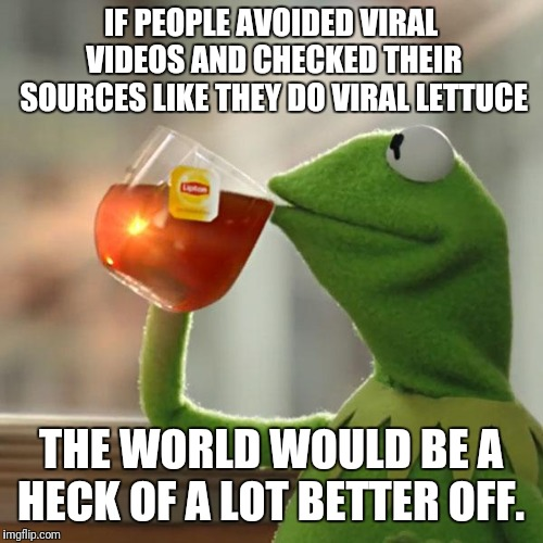 But Thats None Of My Business | IF PEOPLE AVOIDED VIRAL VIDEOS AND CHECKED THEIR SOURCES LIKE THEY DO VIRAL LETTUCE THE WORLD WOULD BE A HECK OF A LOT BETTER OFF. | image tagged in memes,but thats none of my business,kermit the frog | made w/ Imgflip meme maker