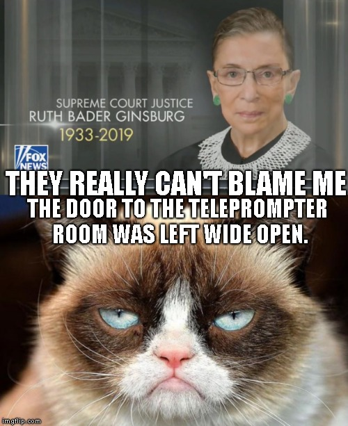 Too Soon ? | THEY REALLY CAN'T BLAME ME THE DOOR TO THE TELEPROMPTER ROOM WAS LEFT WIDE OPEN. | image tagged in memes,grumpy cat not amused,ruth bader ginsburg,not really dead,fake news | made w/ Imgflip meme maker