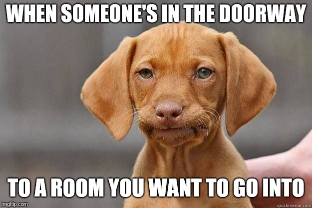 Disappointed Dog | WHEN SOMEONE'S IN THE DOORWAY TO A ROOM YOU WANT TO GO INTO | image tagged in disappointed dog | made w/ Imgflip meme maker