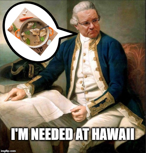 I'M NEEDED AT HAWAII | image tagged in captn scotty | made w/ Imgflip meme maker