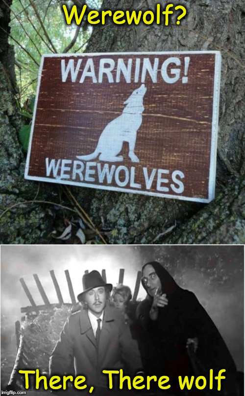 Werewolf? There, There wolf | image tagged in bad pun,werewolf,young frankenstein,gene wilder,marty feldman,funny signs | made w/ Imgflip meme maker