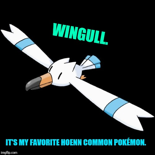 Anyone has a favorite common bird Pokémon?  | WINGULL. IT'S MY FAVORITE HOENN COMMON POKÉMON. | image tagged in hydro the wingull,hoenn,pokemon | made w/ Imgflip meme maker