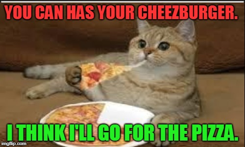 YOU CAN HAS YOUR CHEEZBURGER. I THINK I'LL GO FOR THE PIZZA. | image tagged in cats,memes,funny,nixieknox,i haz pizza | made w/ Imgflip meme maker