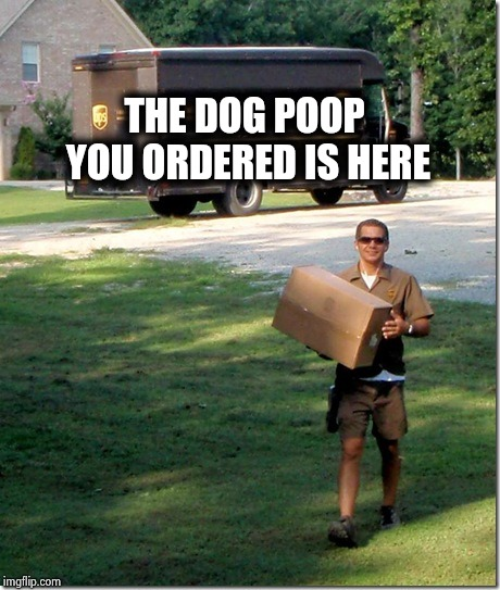 UPS delivery guy | THE DOG POOP YOU ORDERED IS HERE | image tagged in ups delivery guy | made w/ Imgflip meme maker