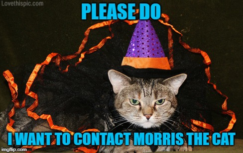 PLEASE DO I WANT TO CONTACT MORRIS THE CAT | made w/ Imgflip meme maker