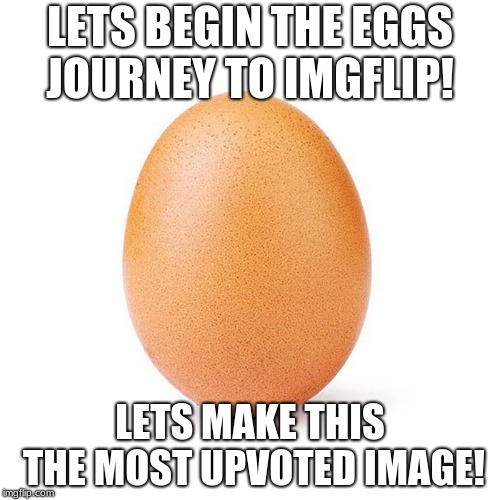 Egg | LETS BEGIN THE EGGS JOURNEY TO IMGFLIP! LETS MAKE THIS THE MOST UPVOTED IMAGE! | image tagged in egg | made w/ Imgflip meme maker