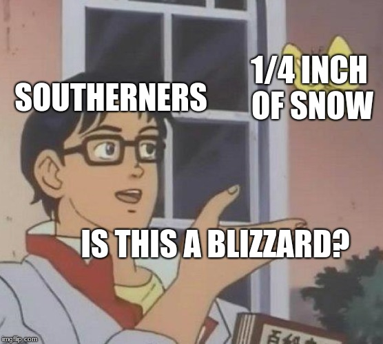 Is This A Pigeon | SOUTHERNERS 1/4 INCH OF SNOW IS THIS A BLIZZARD? | image tagged in memes,is this a pigeon | made w/ Imgflip meme maker