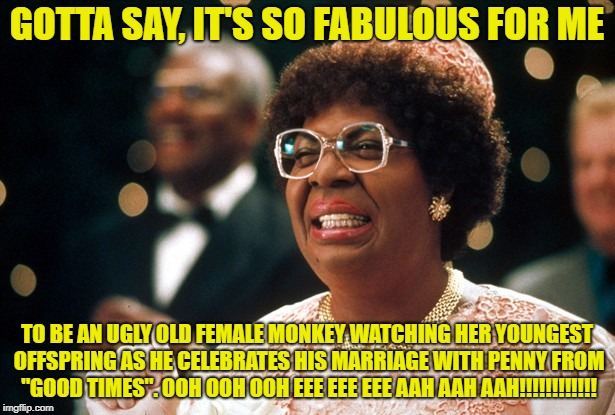 Being an ugly old monkey is fabulous | GOTTA SAY, IT'S SO FABULOUS FOR ME TO BE AN UGLY OLD FEMALE MONKEY WATCHING HER YOUNGEST OFFSPRING AS HE CELEBRATES HIS MARRIAGE WITH PENNY  | image tagged in mama klump,ugly,old,monkey,good times,fabulous | made w/ Imgflip meme maker
