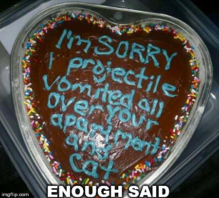 Apology cake | ENOUGH SAID | image tagged in meme,cake,apology,i'm sorry,funny | made w/ Imgflip meme maker