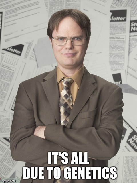 Dwight Schrute 2 Meme | IT'S ALL DUE TO GENETICS | image tagged in memes,dwight schrute 2 | made w/ Imgflip meme maker