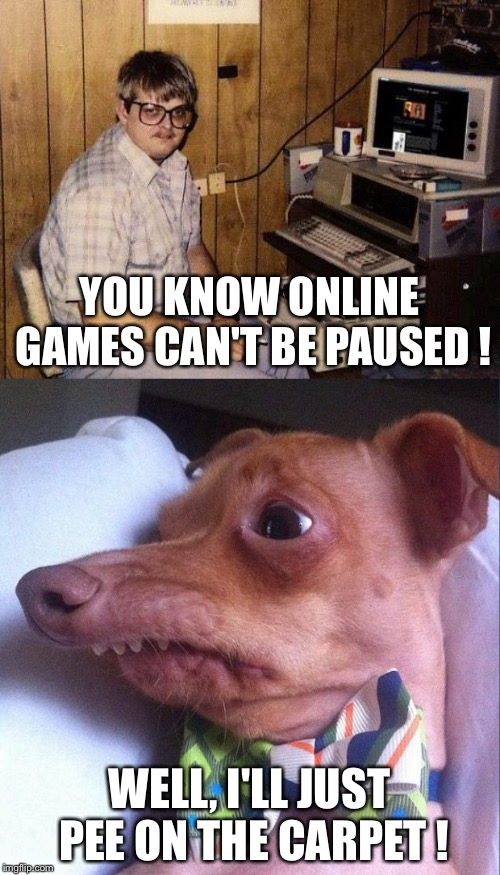 Sometimes it's better to just stop playing. | YOU KNOW ONLINE GAMES CAN'T BE PAUSED ! WELL, I'LL JUST PEE ON THE CARPET ! | image tagged in computer nerd,tuna the dog phteven | made w/ Imgflip meme maker