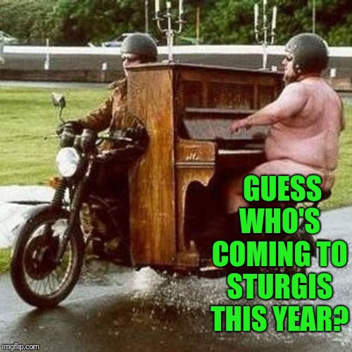 Playing all the classics | GUESS WHO'S COMING TO STURGIS THIS YEAR? | image tagged in grody man,piano bike | made w/ Imgflip meme maker