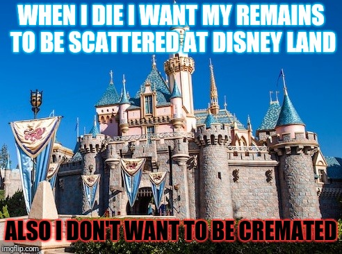 WHEN I DIE I WANT MY REMAINS TO BE SCATTERED AT DISNEY LAND; ALSO I DON'T WANT TO BE CREMATED | image tagged in disney,dark humor | made w/ Imgflip meme maker