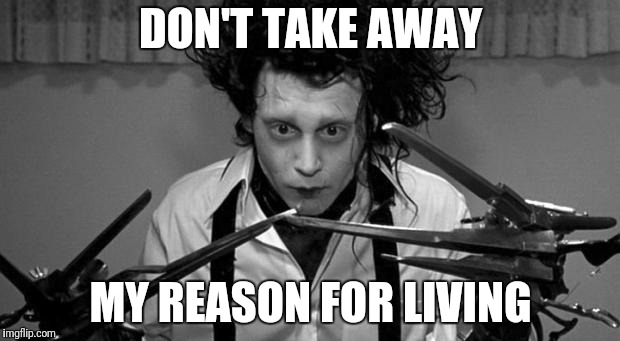 Edward Scissorhands | DON'T TAKE AWAY MY REASON FOR LIVING | image tagged in edward scissorhands | made w/ Imgflip meme maker