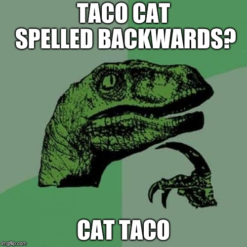 Philosoraptor | TACO CAT SPELLED BACKWARDS? CAT TACO | image tagged in memes,philosoraptor | made w/ Imgflip meme maker