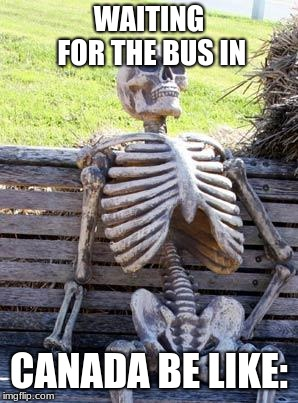 Waiting Skeleton |  WAITING FOR THE BUS IN; CANADA BE LIKE: | image tagged in memes,waiting skeleton | made w/ Imgflip meme maker
