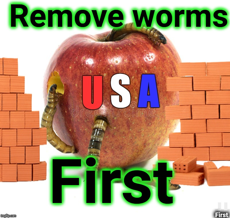 Rotting from the inside | Remove worms First First | image tagged in rotten,worms,usa,corruption,inside out,justjeff | made w/ Imgflip meme maker
