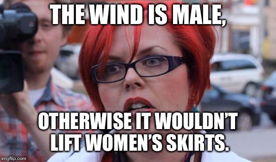Angry Feminist |  THE WIND IS MALE, OTHERWISE IT WOULDN'T LIFT WOMEN'S SKIRTS. | image tagged in angry feminist | made w/ Imgflip meme maker
