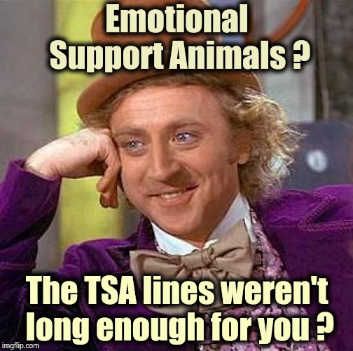 Some guy in Georgia has a support alligator | Emotional Support Animals ? The TSA lines weren't long enough for you ? | image tagged in memes,creepy condescending wonka,airlines,everything,the search continues,slow motion | made w/ Imgflip meme maker
