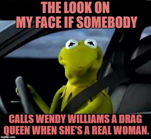 Kermit The Frog frowns at Wendy Williams' transgender rumours | THE LOOK ON MY FACE IF SOMEBODY CALLS WENDY WILLIAMS A DRAG QUEEN WHEN SHE'S A REAL WOMAN. | image tagged in kermit the frog frowned face,wendy williams,drag queen,woman | made w/ Imgflip meme maker