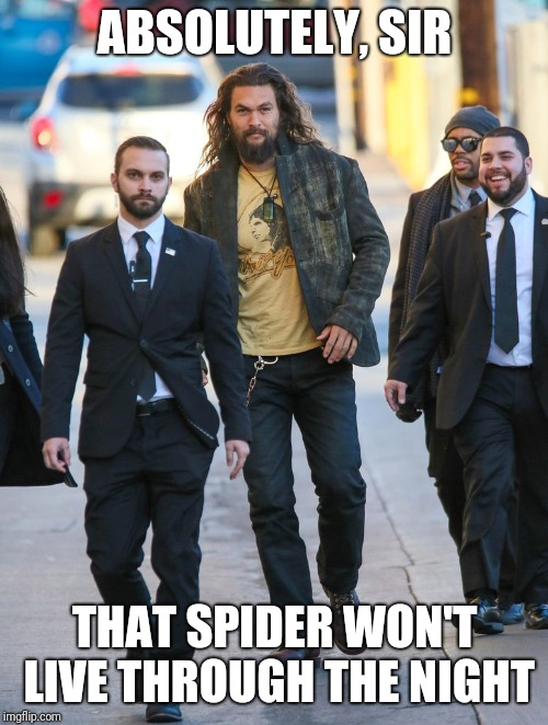 Jason Momoa Bodyguards | ABSOLUTELY, SIR THAT SPIDER WON'T LIVE THROUGH THE NIGHT | image tagged in jason momoa bodyguards | made w/ Imgflip meme maker