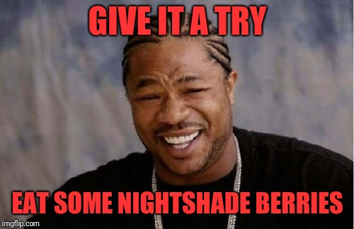 Xibit | GIVE IT A TRY EAT SOME NIGHTSHADE BERRIES | image tagged in xibit | made w/ Imgflip meme maker