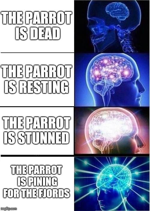 The dead parrot  | THE PARROT IS DEAD THE PARROT IS RESTING THE PARROT IS STUNNED THE PARROT IS PINING FOR THE FJORDS | image tagged in memes,expanding brain,monty python,monty python and the holy grail,parrot | made w/ Imgflip meme maker
